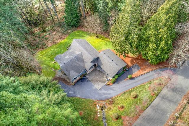 25233 SE Mirrormont Blvd, Issaquah, WA 98027 (#1569895) :: Mary Van Real Estate