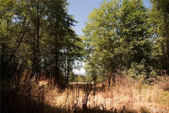 397 Ravenwood, Kelso, WA 98626 (#1570288) :: Northwest Home Team Realty, LLC