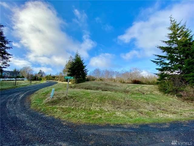 5 Alpine Lane, Hoquiam, WA 98550 (#1570668) :: Ben Kinney Real Estate Team