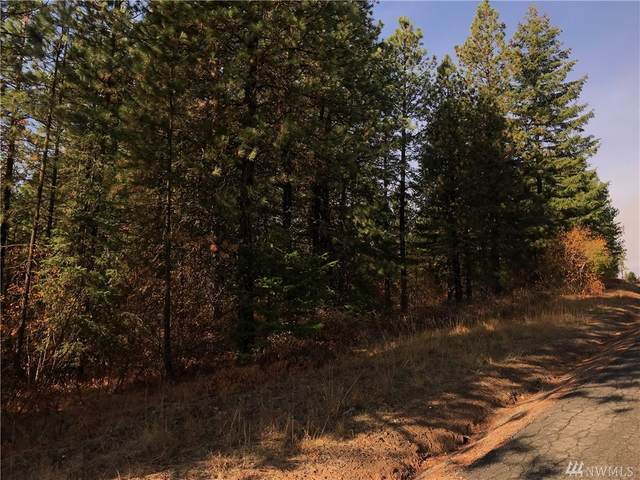 0-Lot C-1 Summit View Rd, Cle Elum, WA 98922 (#1571223) :: The Kendra Todd Group at Keller Williams