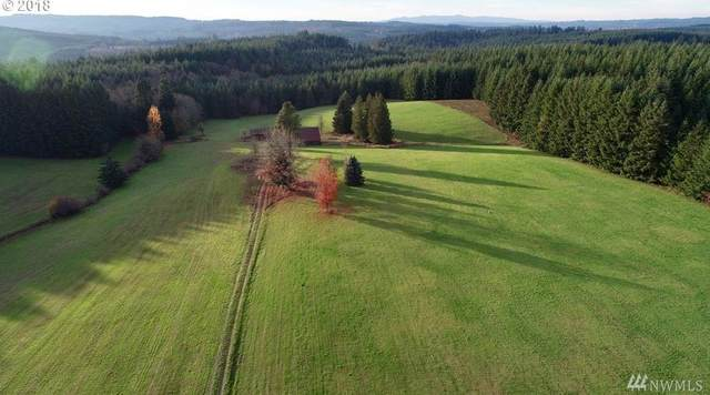 0 Berry Rd, Chehalis, WA 98532 (#1571225) :: Ben Kinney Real Estate Team