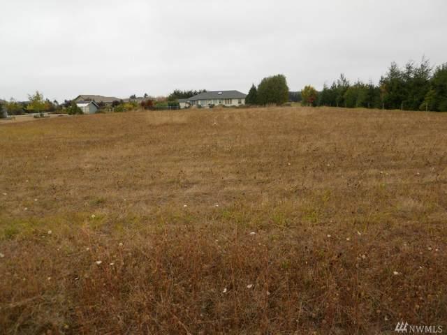 3 Buckhorn Rd, Sequim, WA 98382 (#1571341) :: Ben Kinney Real Estate Team