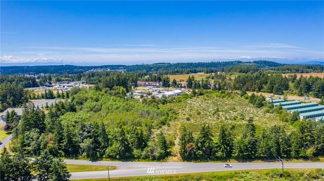 0 State Route 20, Oak Harbor, WA 98277 (#1571615) :: Lucas Pinto Real Estate Group