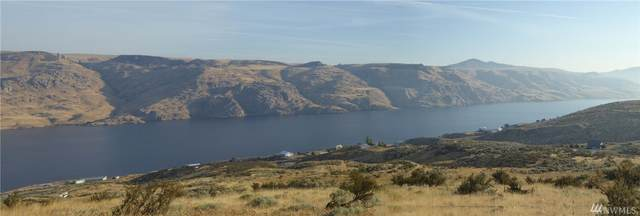 4415 Spring Canyon Rd, Grand Coulee, WA 99133 (#1571868) :: Real Estate Solutions Group