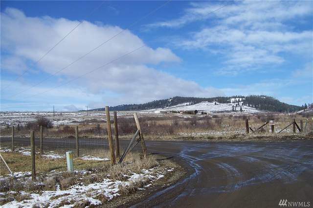 0-Lot 2A Upper Green Canyon Rd, Ellensburg, WA 98922 (#1572503) :: The Kendra Todd Group at Keller Williams