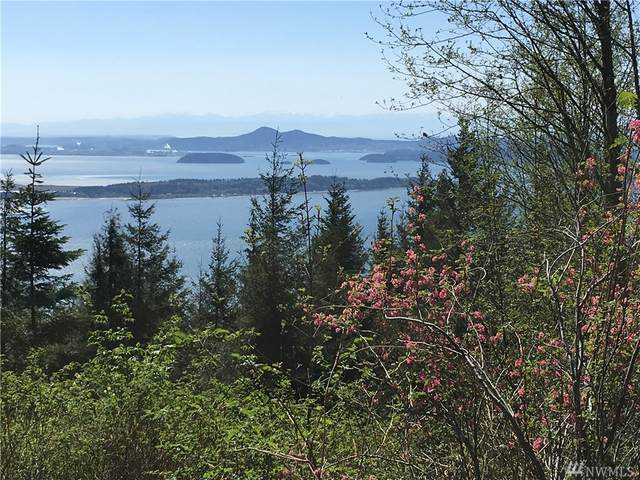 0 Chuckanut Ridge/Heavens Gate, Bow, WA 98232 (#1572525) :: The Kendra Todd Group at Keller Williams