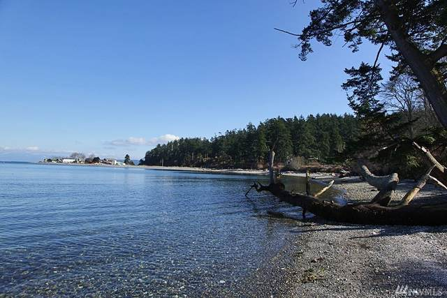 5 Reeder Bay Rd, Coupeville, WA 98239 (#1572669) :: The Kendra Todd Group at Keller Williams