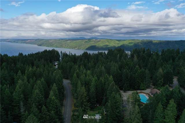 41 N Colony Surf Drive, Lilliwaup, WA 98555 (MLS #1572702) :: Community Real Estate Group