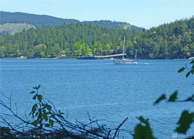 52 Dock Rd, Orcas Island, WA 98245 (#1573590) :: The Kendra Todd Group at Keller Williams