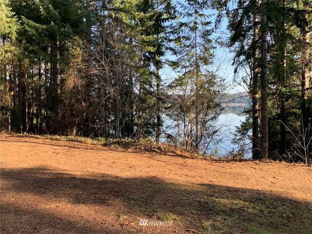 7353 NE North Shore Road, Belfair, WA 98528 (#1573677) :: Better Properties Real Estate