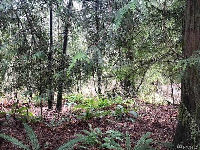 0 Cain Lake Rd, Sedro Woolley, WA 98284 (#1573847) :: Ben Kinney Real Estate Team