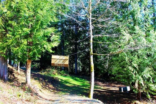 0 E Dartmoor Drive, Shelton, WA 98584 (#1574053) :: Better Homes and Gardens Real Estate McKenzie Group
