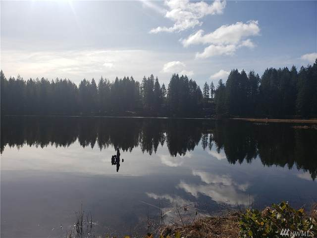400 NE Lake Christine Rd, Tahuya, WA 98588 (#1574675) :: Alchemy Real Estate