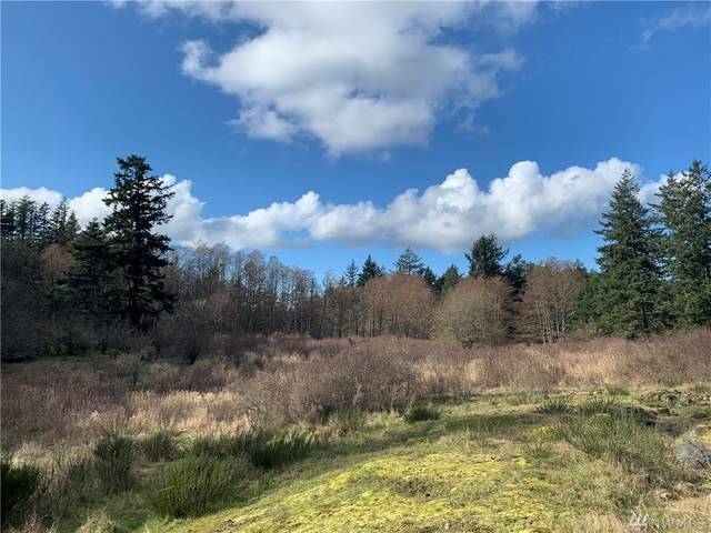 0 Victorian Valley Drive, Orcas Island, WA 98245 (#1574816) :: The Kendra Todd Group at Keller Williams