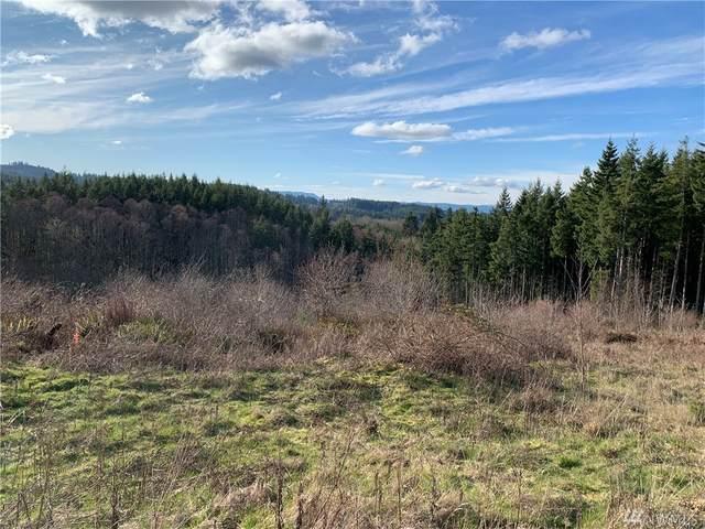 710 Silver Ridge Dr, Castle Rock, WA 98611 (#1575321) :: Ben Kinney Real Estate Team