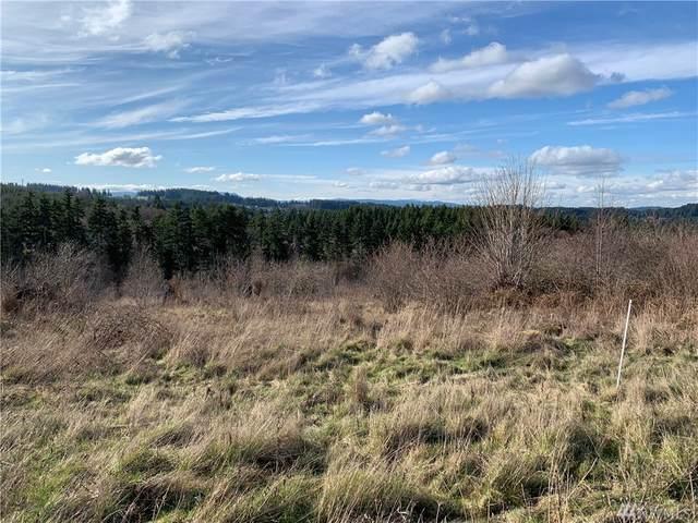654 Silver Ridge Dr, Castle Rock, WA 98611 (#1575322) :: TRI STAR Team | RE/MAX NW