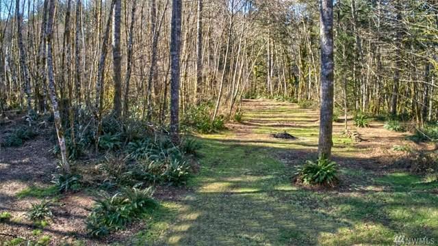 175 Yale Landing Rd, Cougar, WA 98616 (#1575351) :: Mary Van Real Estate