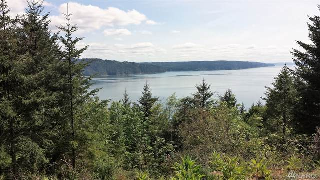 0-322xx N Us Highway 101, Lilliwaup, WA 98555 (#1575384) :: Better Homes and Gardens Real Estate McKenzie Group