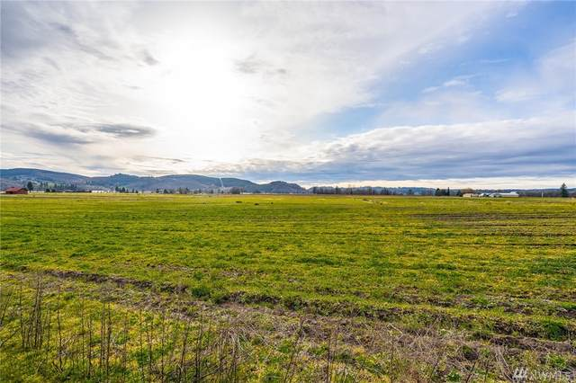 3-xx Birley Rd, Mossyrock, WA 98564 (#1575564) :: Better Homes and Gardens Real Estate McKenzie Group