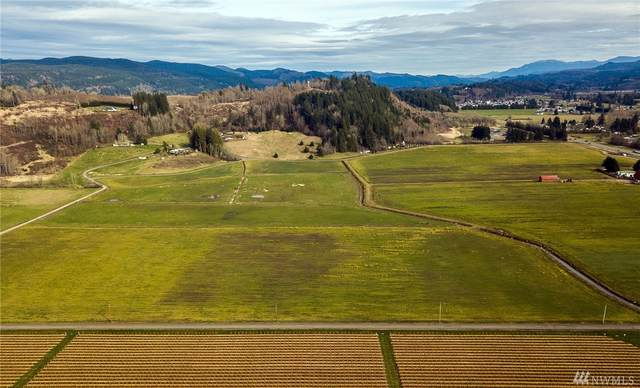 2-xx Birley Rd, Mossyrock, WA 98564 (#1575593) :: Better Homes and Gardens Real Estate McKenzie Group