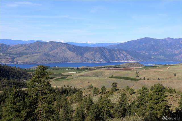 0 Purtteman Gulch Road, Chelan, WA 98816 (#1575711) :: Pacific Partners @ Greene Realty