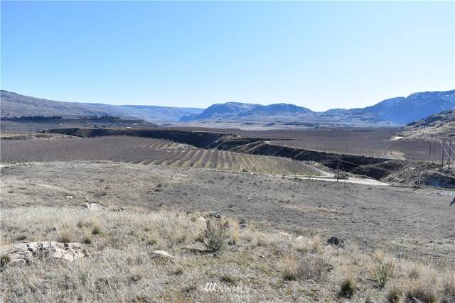 190 Watson Draw Road, Pateros, WA 98846 (MLS #1575792) :: Brantley Christianson Real Estate