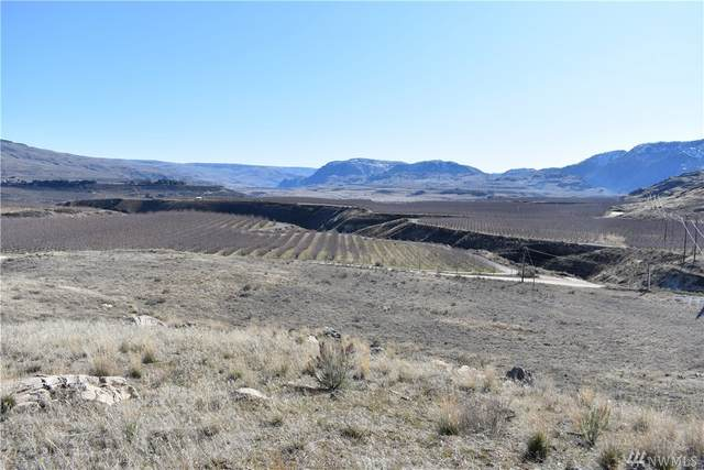 190 Watson Draw Road, Pateros, WA 98846 (#1575792) :: The Shiflett Group