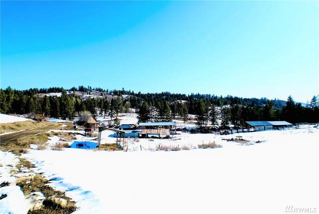 90 Brenner Rd, Curlew, WA 99118 (#1576888) :: Alchemy Real Estate