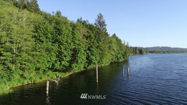 9999 E Lake Pleasant Road, Beaver, WA 98305 (#1577512) :: Canterwood Real Estate Team