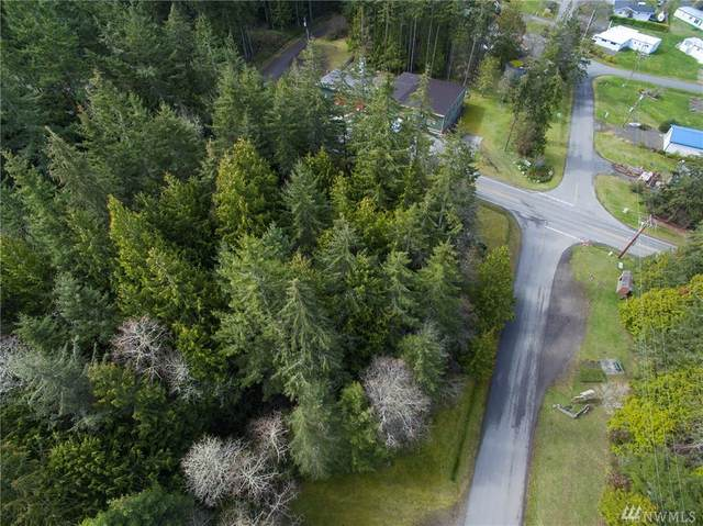 1 Saddle Drive, Port Townsend, WA 98368 (#1578118) :: Hauer Home Team