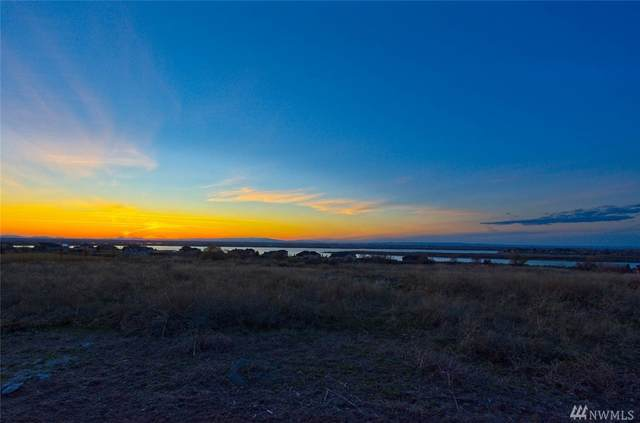 8266 Dune Lake Rd, Moses Lake, WA 98837 (MLS #1578295) :: Nick McLean Real Estate Group