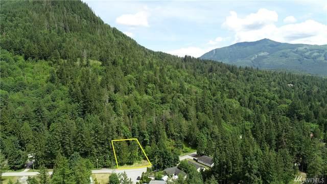 7868 Santa Fe Trail, Maple Falls, WA 98266 (#1578957) :: Keller Williams Realty
