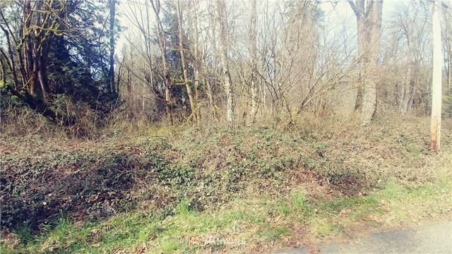 0 Cape Horn Drive, Concrete, WA 98237 (#1578987) :: Better Properties Lacey