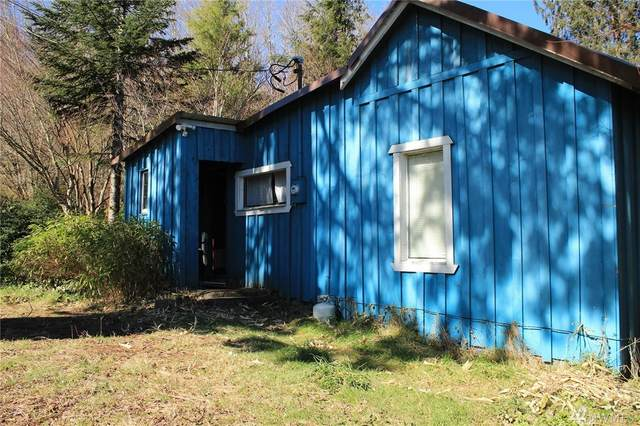 202563 Hwy 101, Beaver, WA 98305 (#1579566) :: Ben Kinney Real Estate Team