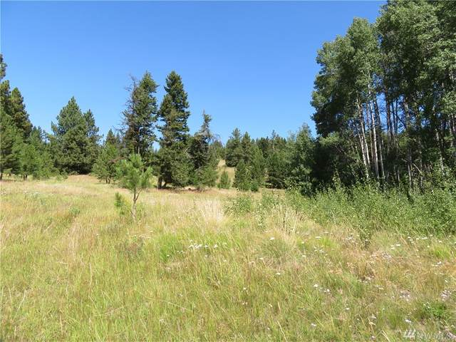 0-Lot 4 Bonaparte Run Rd, Wauconda, WA 98859 (#1579609) :: Ben Kinney Real Estate Team