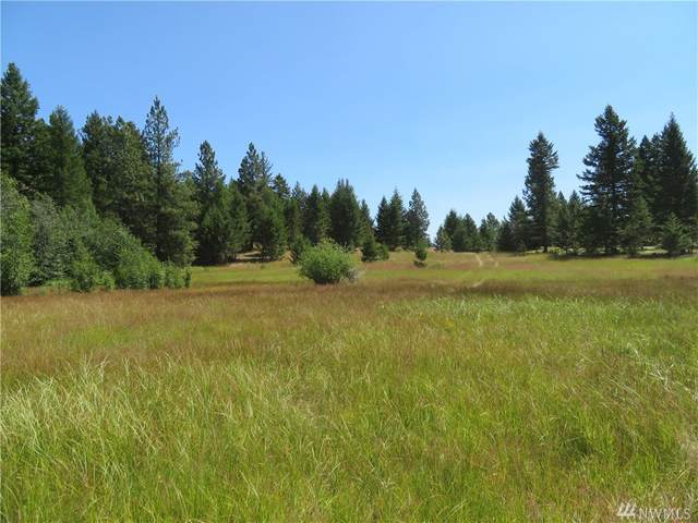 0-Lot 5 Bonaparte Run Rd, Wauconda, WA 98859 (#1579645) :: Ben Kinney Real Estate Team
