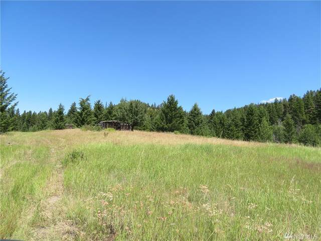 0-Lot 6 Bonaparte Run Rd, Wauconda, WA 98859 (#1579706) :: Ben Kinney Real Estate Team