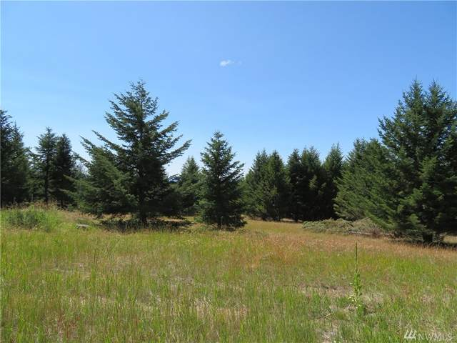 0-Lot 7 Bonaparte Run Rd, Wauconda, WA 98859 (#1579744) :: Ben Kinney Real Estate Team