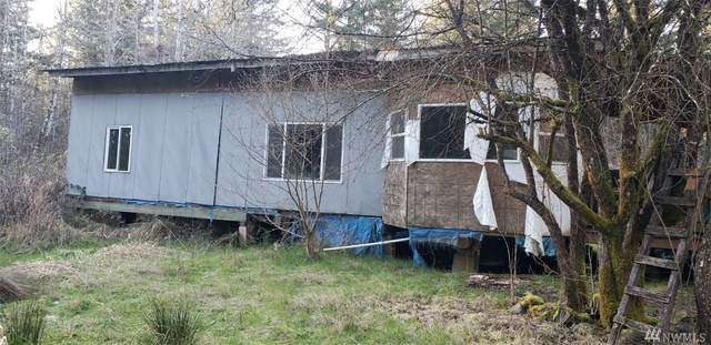 402 Zandecki Rd, Napavine, WA 98532 (#1580049) :: Hauer Home Team