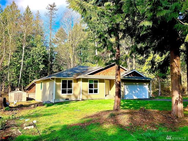 157 Northwood Dr, Point Roberts, WA 98281 (#1580373) :: Ben Kinney Real Estate Team