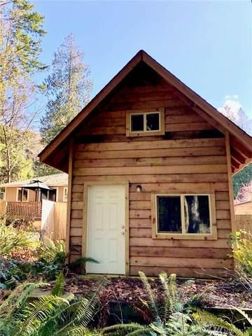 161 Tyee Dr, Point Roberts, WA 98281 (#1580503) :: Ben Kinney Real Estate Team