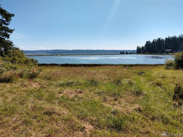 487 Race Rd, Coupeville, WA 98239 (#1580831) :: The Kendra Todd Group at Keller Williams