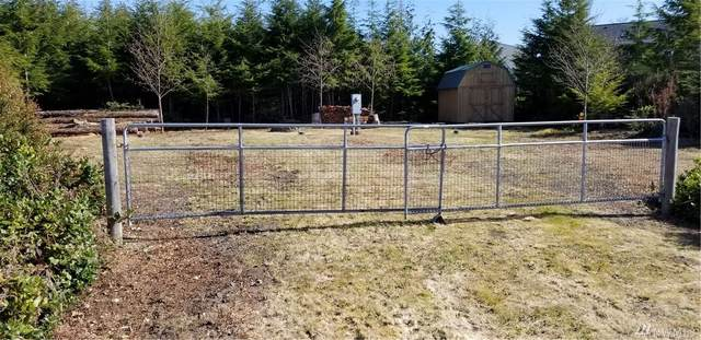 20710 Crane Place, Ocean Park, WA 98640 (#1581454) :: The Kendra Todd Group at Keller Williams