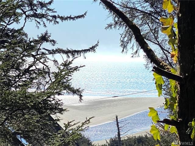 19 Ocean View Lane, Copalis Beach, WA 98535 (#1581495) :: Real Estate Solutions Group