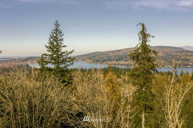 4591 Lost Creek Lane, Bellingham, WA 98229 (#1582107) :: Pickett Street Properties