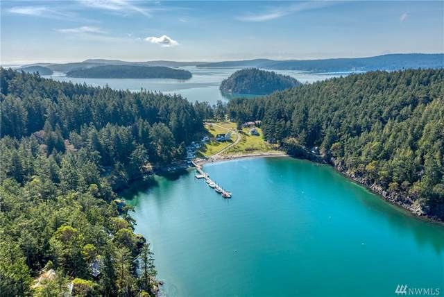 197 E Cove Rd, Decatur Island, WA 98221 (#1582598) :: Ben Kinney Real Estate Team