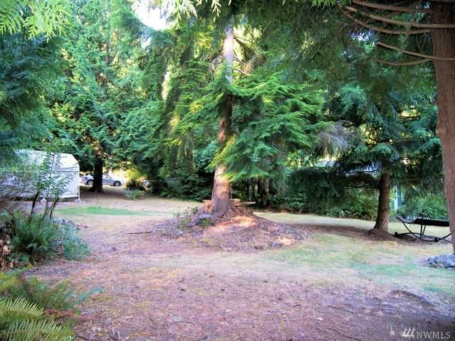 2912 Cedar Ave, Lummi Island, WA 98262 (#1582631) :: The Kendra Todd Group at Keller Williams