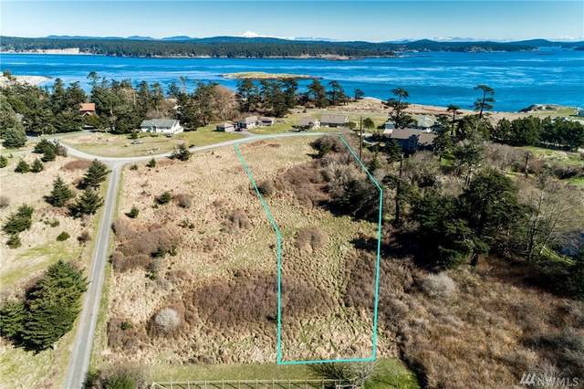 27 Lighthouse Lane, San Juan Island, WA 98250 (#1582738) :: Ben Kinney Real Estate Team