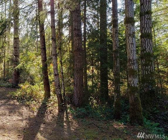 0 Wilderness Wy, Shelton, WA 92821 (#1582924) :: The Kendra Todd Group at Keller Williams