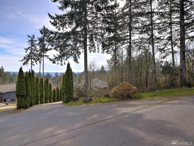 255 E Mountain View Dr, Allyn, WA 98524 (#1583096) :: Alchemy Real Estate
